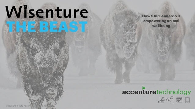 Copyright © 2018 Accenture. All rights reserved. THE BEAST How SAP Leonardo is empowering animal wellbeing