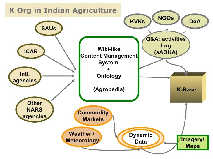Drone solutions for agriculture in India: A case study ...