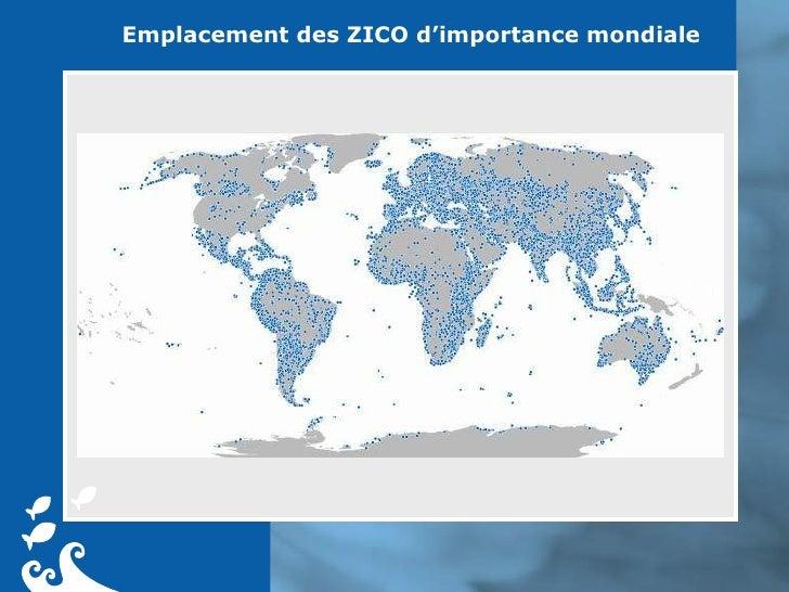 Emplacement des ZICO d'importance mondiale