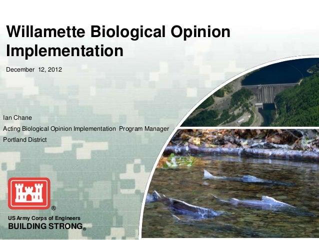 Willamette Biological Opinion Implementation December 12, 2012Ian ChaneActing Biological Opinion Implementation Program Ma...