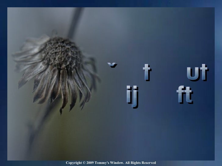 This slide show is automatically timed with the song.  Don't click  to change slides, just let it play. Copyright © 2009 T...