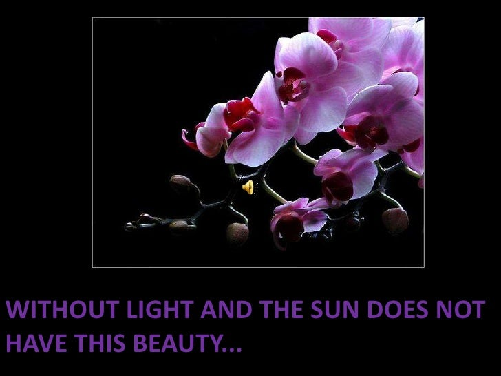 Without light and the sun does not have this beauty...<br />