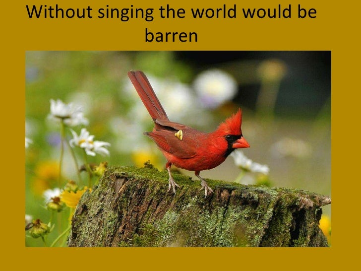 Without singing the world would be barren<br />