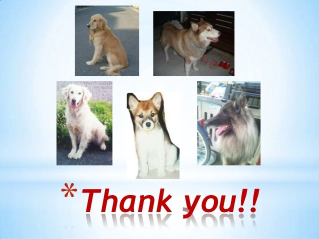 *Thank you!!