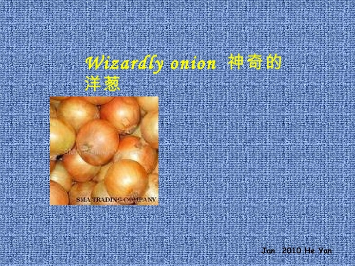 Wizardly onion  神奇的洋葱 Jan  2010 He Yan