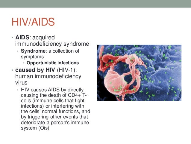 HPV and HIV: Know the Difference Between Symptoms, Risks, and More