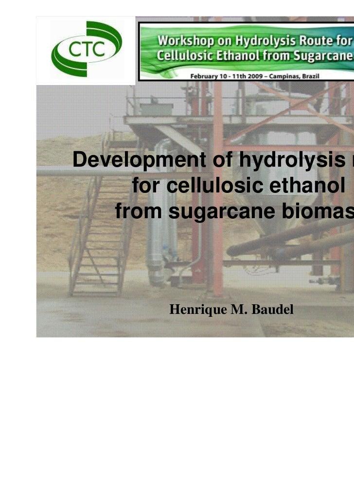 Catalytic Processes Laboratories                                Biomass Conversion Group                                  ...