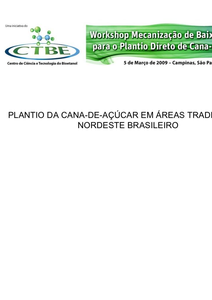 PLANTIO DA CANA-DE-AÇÚCAR EM ÁREAS TRADICIONAIS              NORDESTE BRASILEIRO