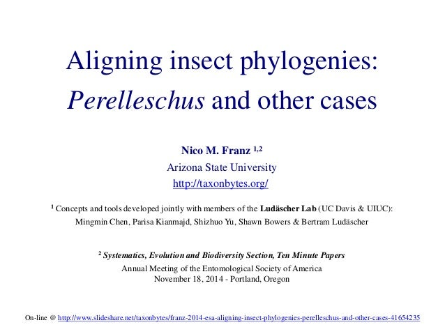 Aligning insect phylogenies:  Perelleschus and other cases  Nico M. Franz 1,2  Arizona State University  http://taxonbytes...
