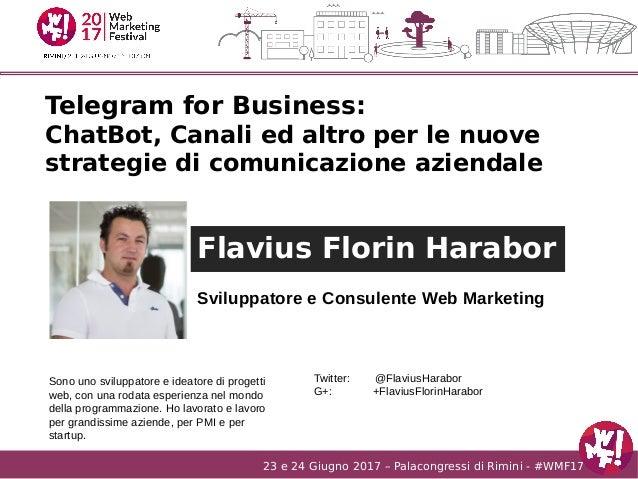 23 e 24 Giugno 2017 – Palacongressi di Rimini - #WMF17 Flavius Florin Harabor Sviluppatore e Consulente Web Marketing Sono...