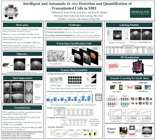 Challenges Intelligent and Automatic In vivo Detection and Quantification of Transplanted Cells in MRI Muhammad Jamal Afri...