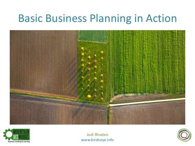 Basic Business Planning in Action Jodi Rhoden www.birdseye.info