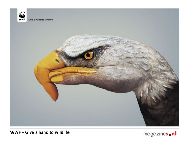 WWF – Give a hand to wildlife