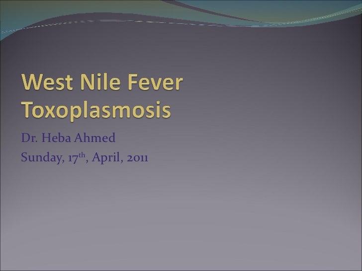 Dr. Heba Ahmed Sunday, 17 th , April, 2011