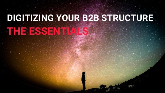 DIGITIZING YOUR B2B STRUCTURE THE ESSENTIALS