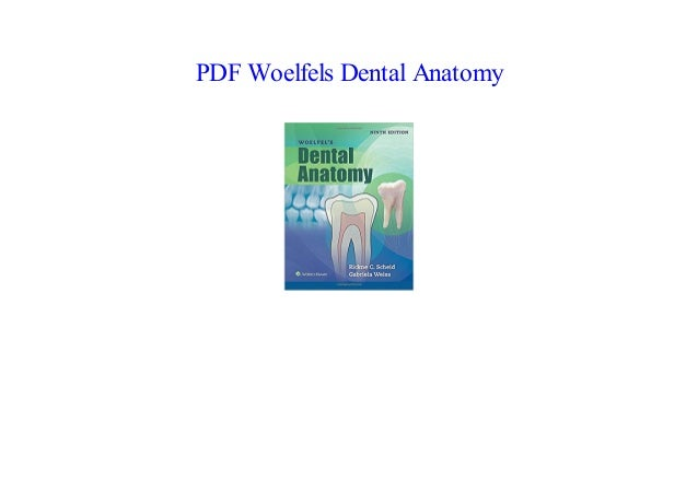 Dental Anatomy Ebook