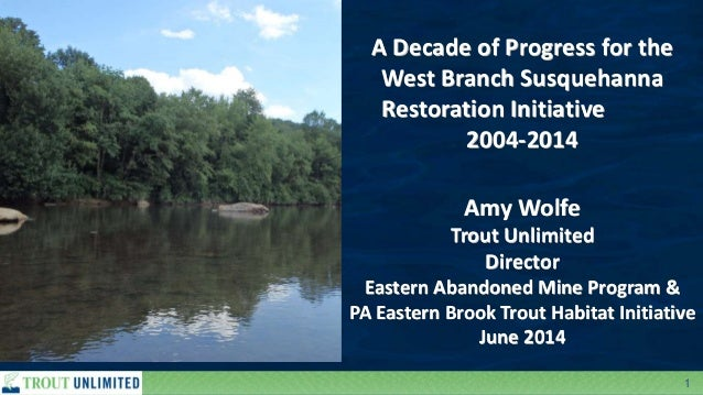 1 A Decade of Progress for the West Branch Susquehanna Restoration Initiative 2004-2014 Amy Wolfe Trout Unlimited Director...