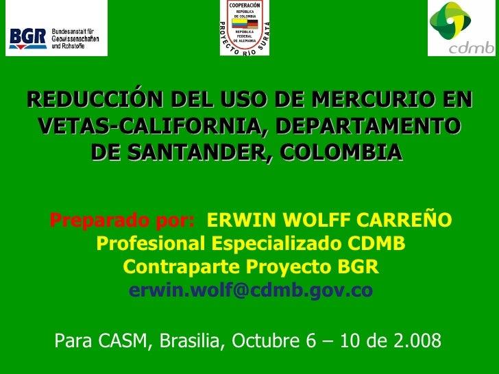REDUCCIÓN DEL USO DE MERCURIO EN VETAS-CALIFORNIA, DEPARTAMENTO DE SANTANDER, COLOMBIA   Preparado por:  ERWIN WOLFF CARRE...