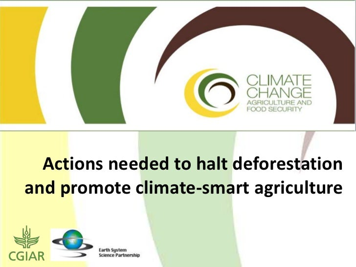 Actions needed to halt deforestation and promote climate-smart agriculture<br />