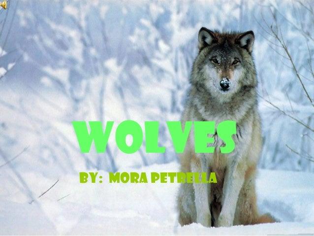 WOLVES BY: MORA PETRELLA