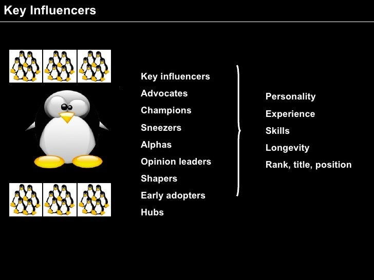 Key Influencers                       Key influencers                   Advocates         Personality                   Ch...