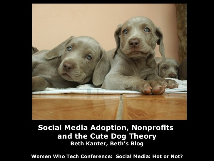 Social Media Adoption, Nonprofits  and the Cute Dog Theory Beth Kanter, Beth's Blog Women Who Tech Conference:  Social Med...