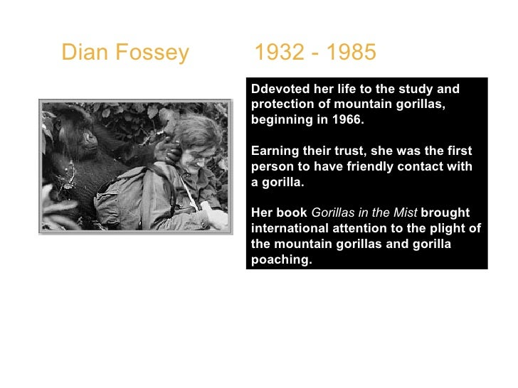 Dian Fossey  1932 - 1985  Ddevoted her life to the study and protection of mountain gorillas, beginning in 1966.  Earning ...