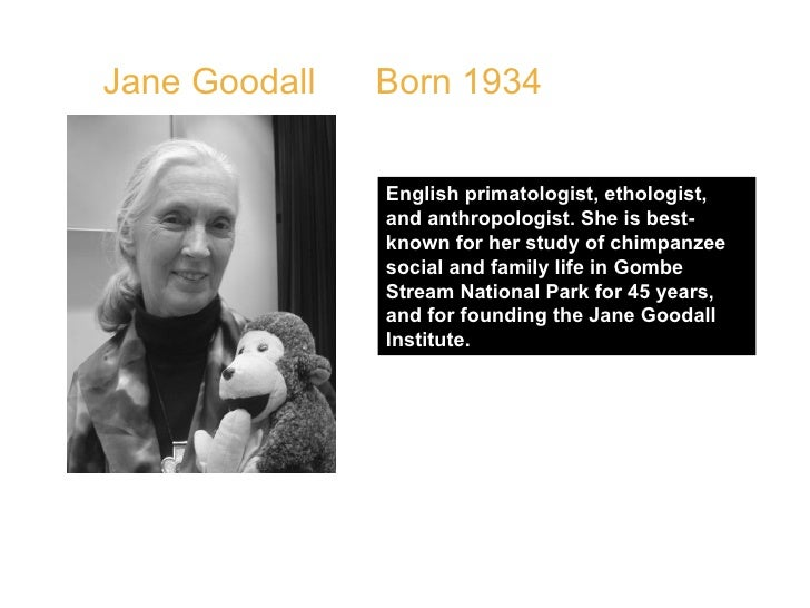 """Jane Goodall  Born 1934  QUOTE: """" If you really want something, and really work hard, and take advantage of opportunities,..."""