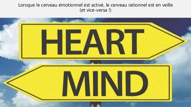 Lorsque le cerveau émotionnel est activé, le cerveau rationnel est en veille (et vice-versa !)