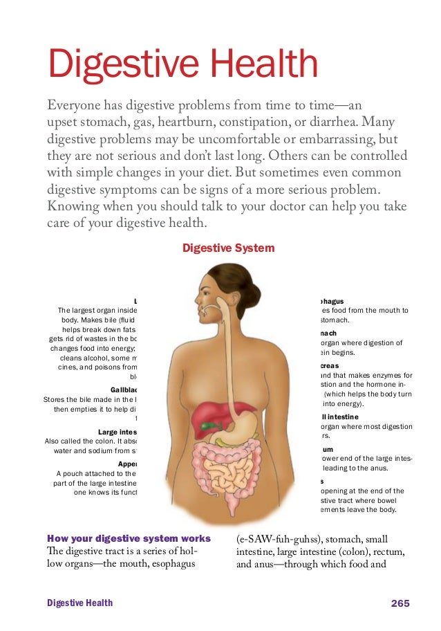 Digestive Health Everyone has digestive problems from time to time—an upset stomach, gas, heartburn, constipation, or diar...