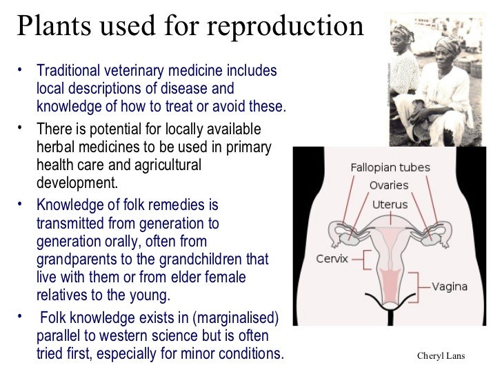 Plants used for reproduction• Traditional veterinary medicine includes  local descriptions of disease and  knowledge of ho...
