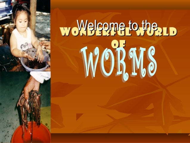 Wonderful WorldWonderful World ofof Welcome to theWelcome to the