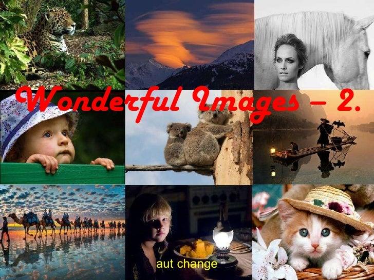 Wonderful Images – 2. aut change