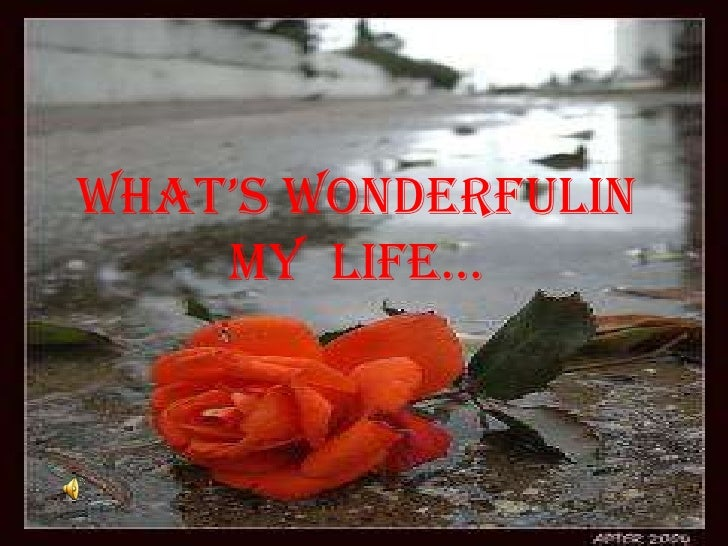 What's Wonderfulin my  life…<br />
