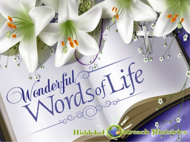 133. Wonderful Words of Life