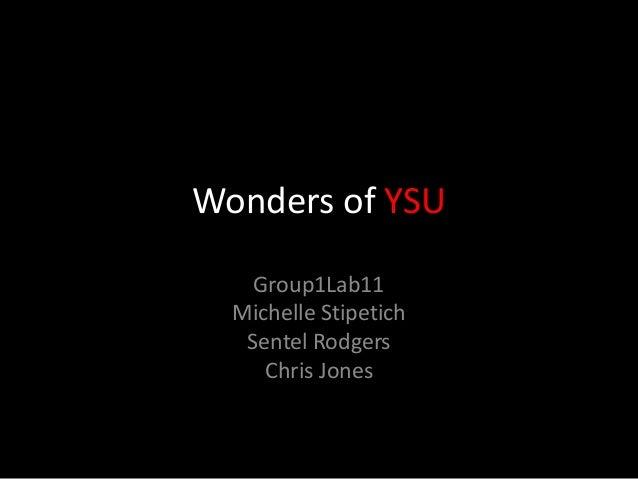 Wonders of YSU Group1Lab11 Michelle Stipetich Sentel Rodgers Chris Jones
