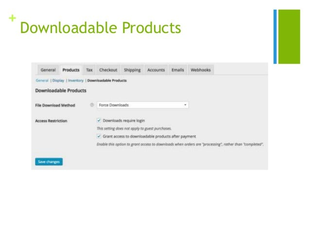 + Downloadable Products