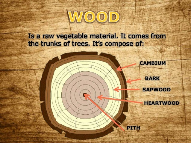 Wood And Its Derivatives