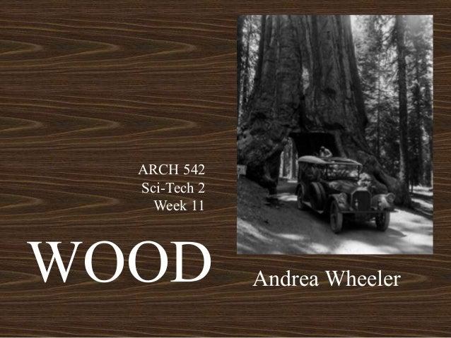 WOOD Andrea Wheeler ARCH 542 Sci-Tech 2 Week 11