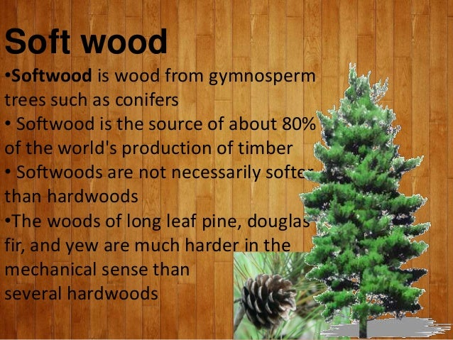 Wood and it s types