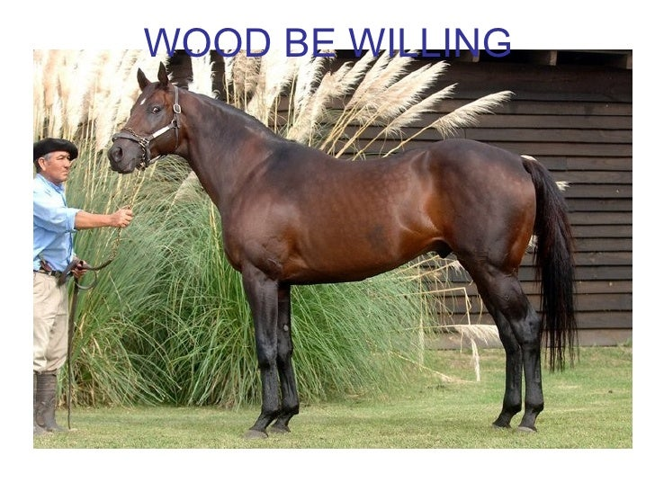 WOOD BE WILLING