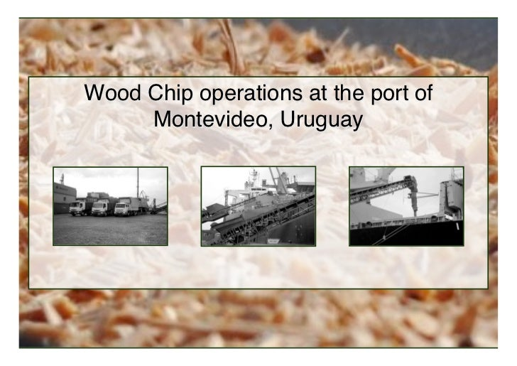 Wood Chip operations at the port of     Montevideo, Uruguay