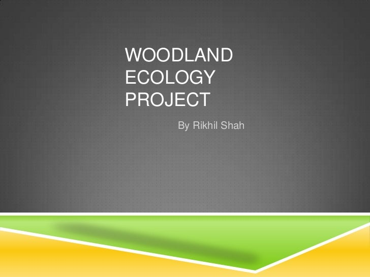 Woodland Ecology Project<br />By Rikhil Shah<br />