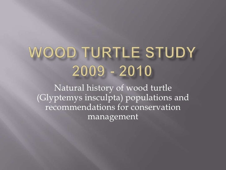 Wood Turtle Study 2009 - 2010<br />Natural history of wood turtle (Glyptemys insculpta) populations and recommendations fo...