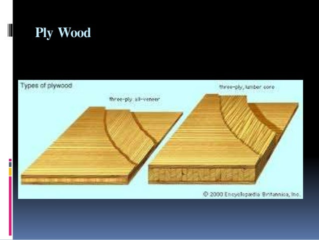 Wood Utilization And Its Status In Pakistan