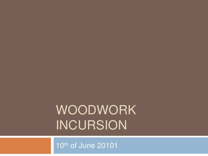 WOODWORK INCURSION<br />10th of June 20101<br />
