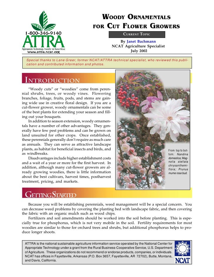 WOODY ORNAMENTALS                                               FOR CUT FLOWER GROWERS                                    ...