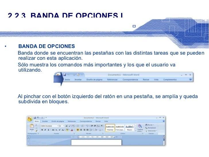 2.2.3. BANDA DE OPCIONES I <ul><li>BANDA DE OPCIONES </li></ul><ul><li>Banda donde se encuentran las pestañas con las dist...