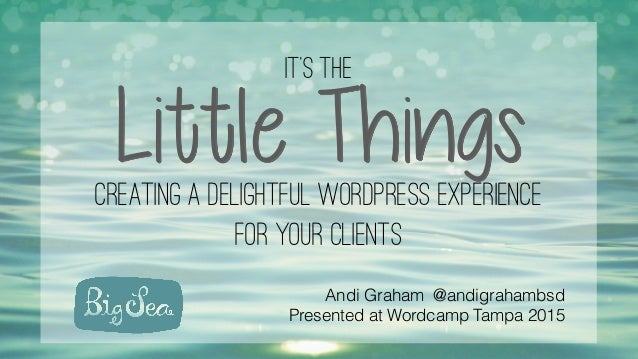 It's the Little Thingscreating a delightful wordpress experience for your clients Andi Graham @andigrahambsd Presented at ...