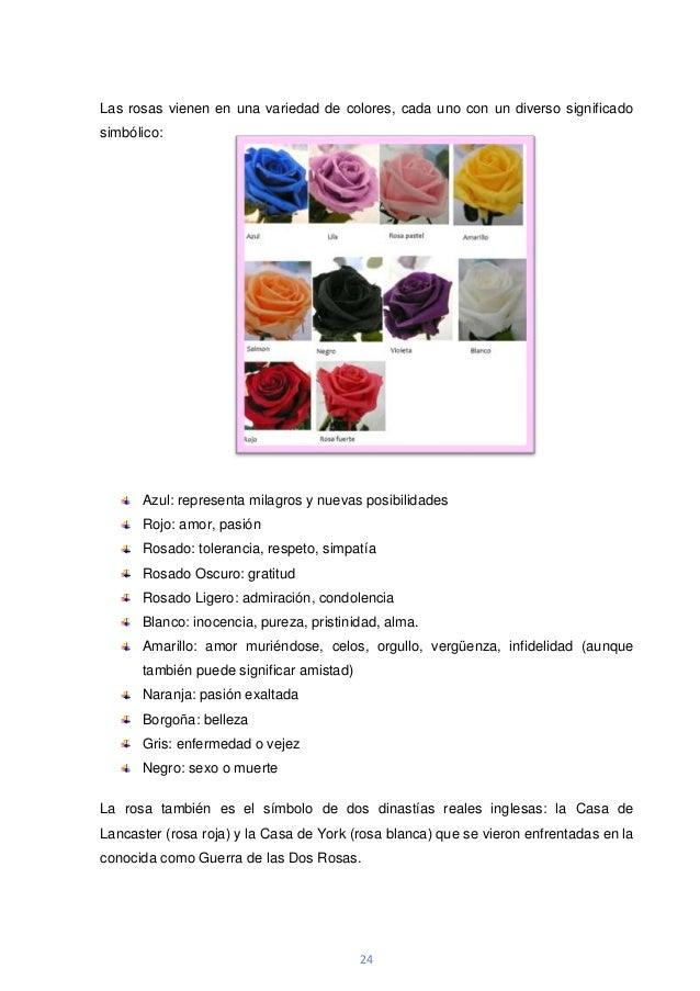 Word del proyecto de biologia - Significado colores de las rosas ...